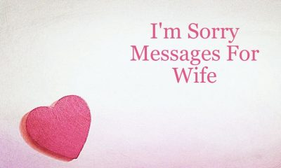 Sorry Messages For Wife With Images Love and Romantic