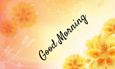 Amazing Good Morning Images With Pictures Quotes Wishes Messages